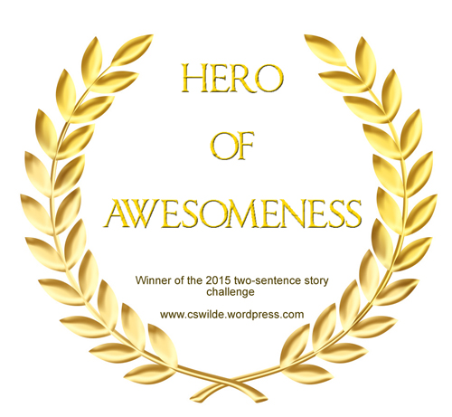 hero-of-awesomeness